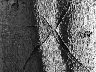 Letterform X